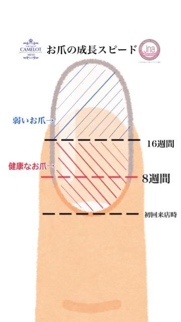 お爪の成長スピード 深爪改善の期間
